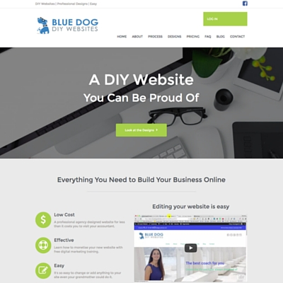 Blue Dog DIY Websites