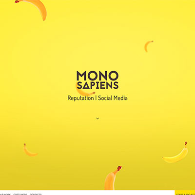 screencapture-monosapiens-pro-1448231090143
