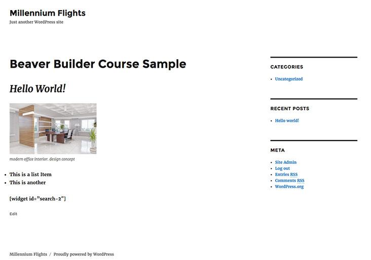 Choosing the Right Theme for Beaver Builder