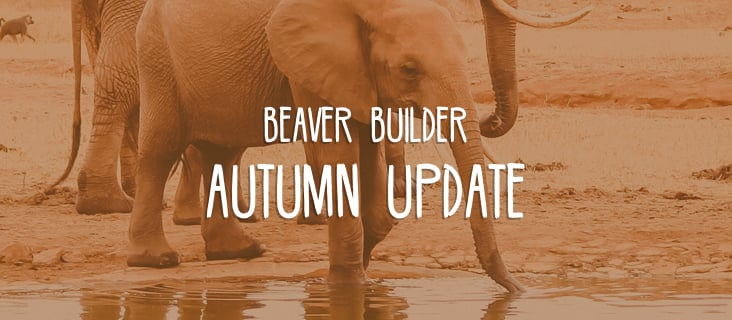 Beaver Builder autumn updat
