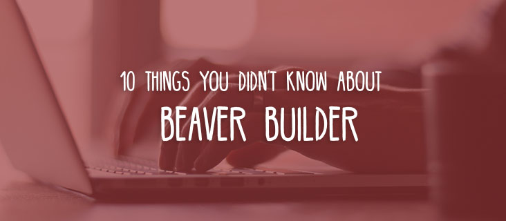 A complete beginners guide to Beaver Builder