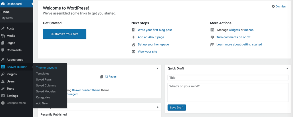 Selecting Themer Layouts from the sidebar.