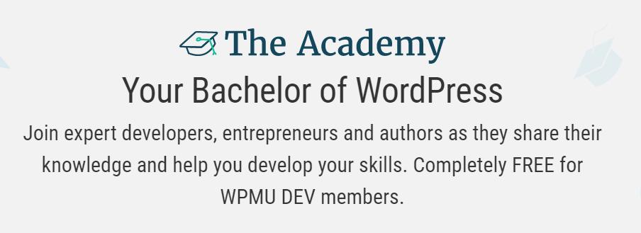 The WPMU DEV Academy homepage.