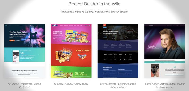 Beaver Builder Example Sites