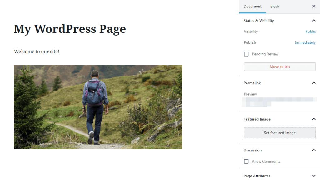 WordPress page settings.