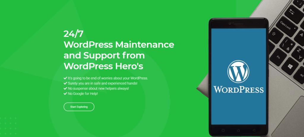 Premium-WordPress-maintenance-and-support