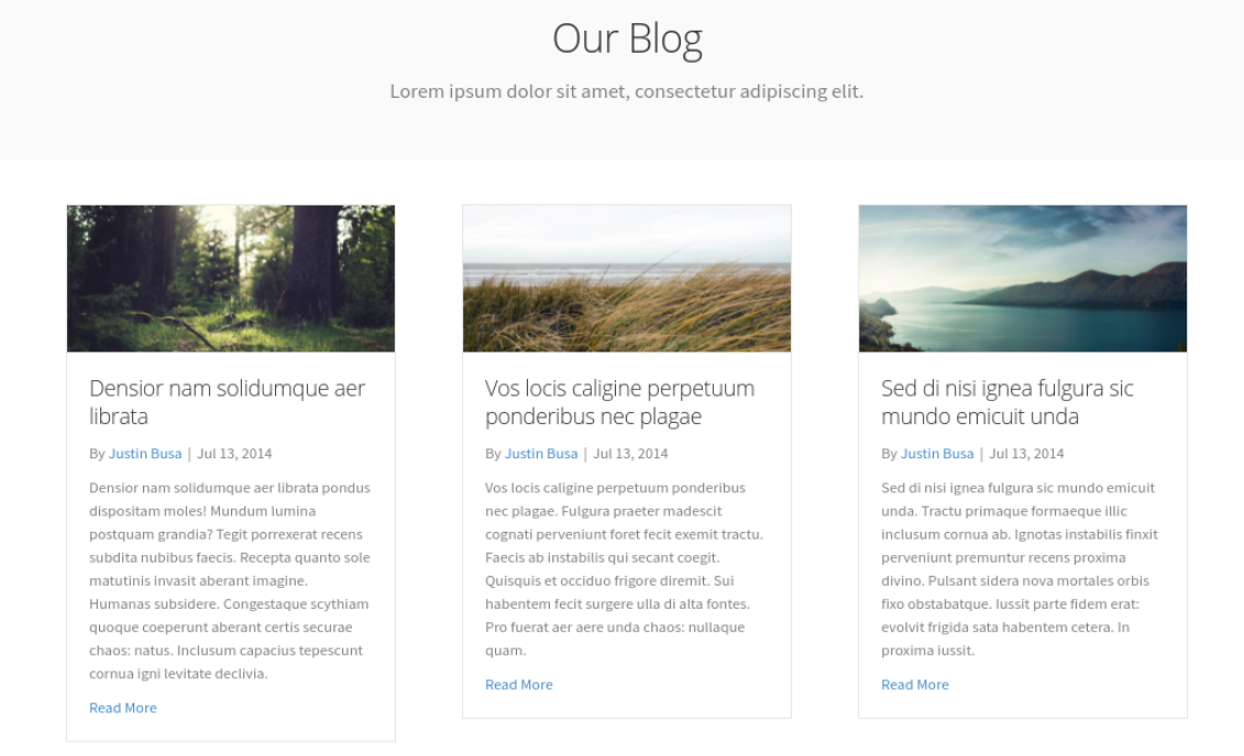 A blog displaying posts via Beaver Builder posts module.